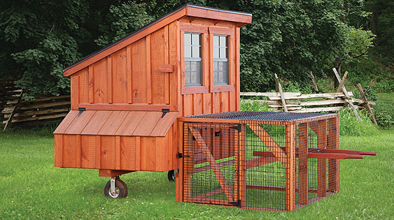 Lean-To Chicken Coop - Eberly Barns